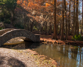 Photo of bridge over small pond at avery island
