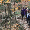 Photo of six students in the forest on clark creek adventure